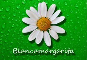 Blancamargarita